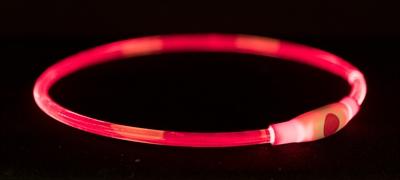 TRIXIE HALSBAND USB FLASH LIGHT LICHTGEVEND OPLAADBAAR ROOD