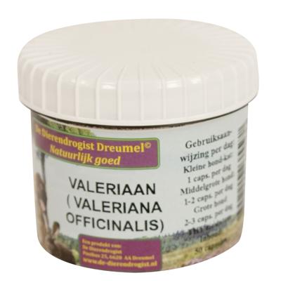 DIERENDROGIST VALERIAAN/HOP CAPSULES