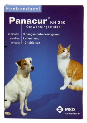 PANACUR HOND/KAT